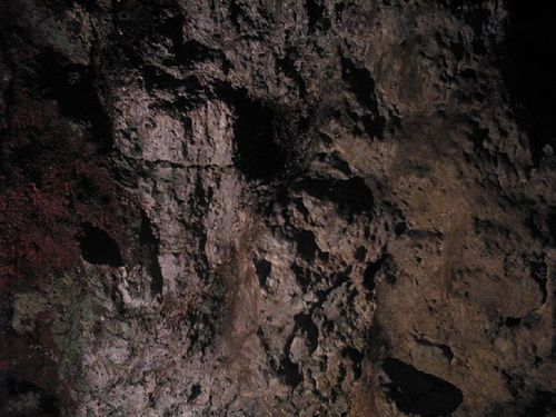 yercaud-bears-cave
