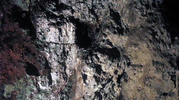 Bears Cave in Yercau